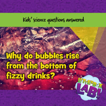 Why do bubbles keep rising from the bottom of fizzy drinks and don't run out?