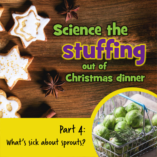 What's sick about sprouts?