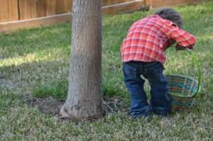 Organise an Easter Egg Hunt | Family Activities for the Easter Holidays