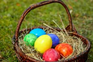 Go on an easter egg hunt | Family activities for the easter holidays